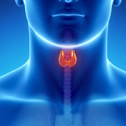Dr. Cass Ingram's Thyroid Gland Test