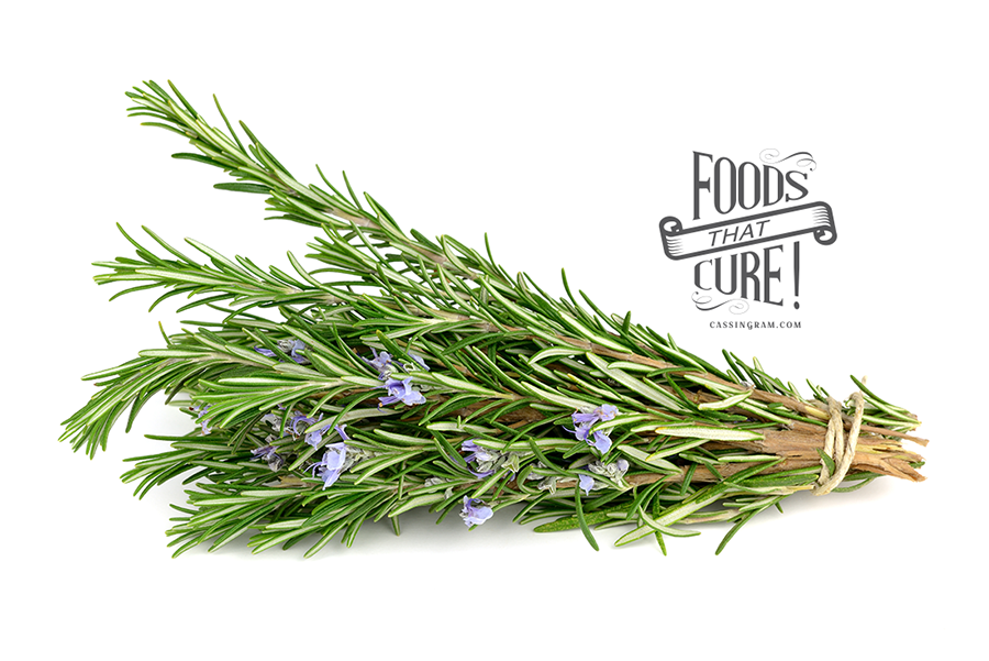 What Dog Foods Is Rosemary In